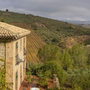 シチリア ピアッツァアルメリーナにある葡萄畑に泊まる!