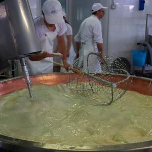 イタリア美食探訪ツアー 旅の途中でチーズ工場見学