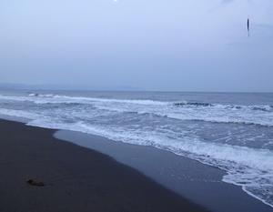 海アメ海サクラ No.2