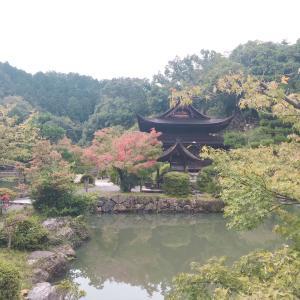 美しい岐阜県多治見市