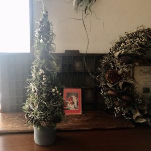 60cmのツリー創りました。。。