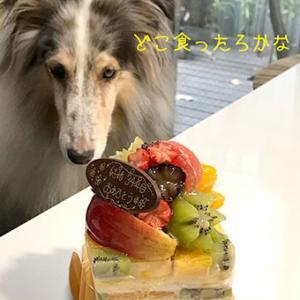 ★☆ ファンキー・フルーツ/少し遅れのバースデー