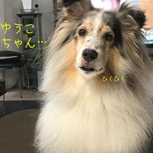 ★☆ STRAWBERRY NIGHT/どうして…