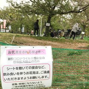 ★☆ 無力と知った日/とあるひの公園にて