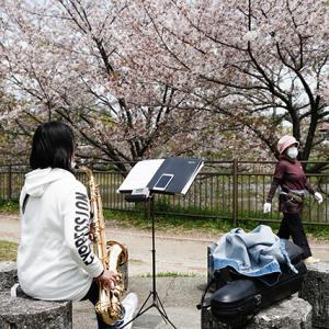 トテモ静です 4月16日(木)晴れ