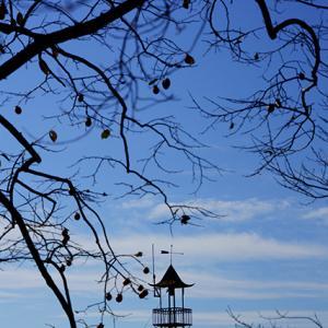 三連休最終日 11月23日(月・祝)曇り時々晴れ