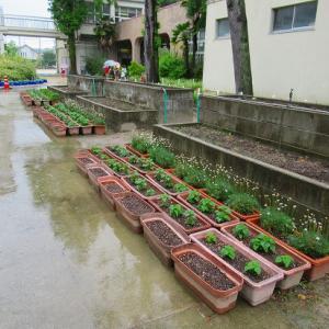 雨の日の学校は~