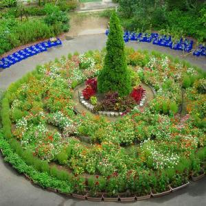 円形花壇 上から見れば・・・・
