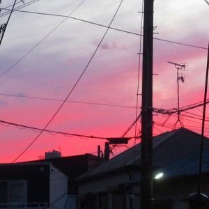 昨日の真っ赤な夕焼け