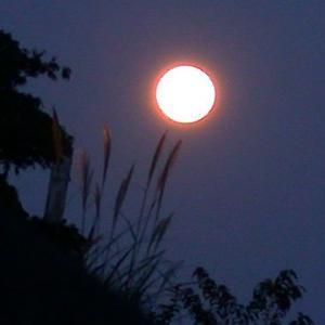 もうじき満月★9月21日うお座で満月