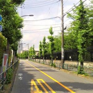 京成高砂駅~京成金町駅。その5。水戸街道=国道6号線。金町駅周辺再開発。