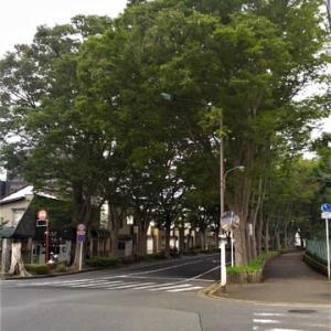 八柱。「金ヶ作陣屋」。東武線「六実」駅~JR「松戸」駅。その3。(「鮮魚街道」をゆく。第2日目)