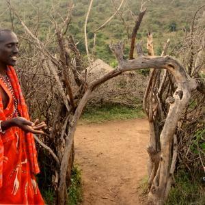 ★2008年ケニア旅 マサイ族に会いに行くの巻