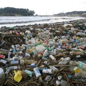 海はゴミだらけ・・・プラスチックごみ・・・