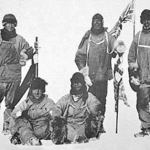 今日は南極の日なんやて!!