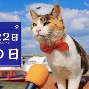 今日は猫の日(^_-)-☆