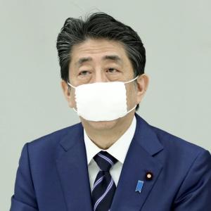 安倍さんのマスクは小さいなぁ・・・(笑)