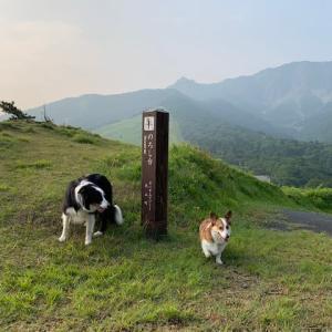 朝から山へ