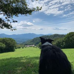 2日前の山