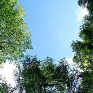 八ヶ岳西麓原村(3) ドガティ君は初めて女神湖を訪れ、ウォーキングを楽しむ