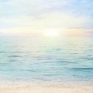 エネルギー上昇の日〜自分の人生は自分の意識で創っている
