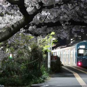 夜桜と国鉄車両
