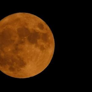 明るかったなぁ~満月