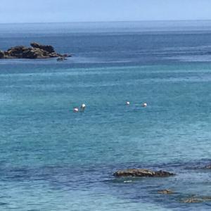 海水浴場の最終整備完了!今週末の7/11(土)から海岸監視業務が開始