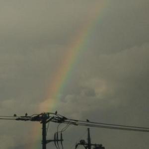 ★…早朝ちょい散歩中『虹』が…★