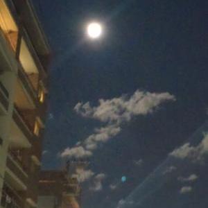 ★…昨夜のお月さんと早朝まだ朝顔が…★