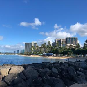 【ハワイ】ハートの木