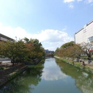 岡崎公園も秋色