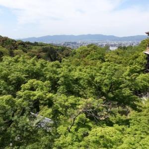 絵葉書的、新緑の清水寺