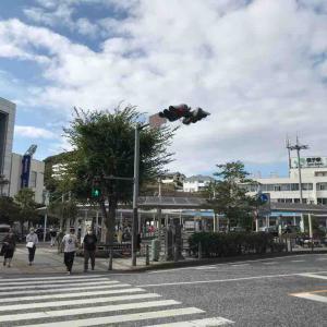 逗子・鎌倉日帰り旅行記① 逗子の街並み