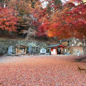 河口湖旅行記⑪ 昇仙峡観光⑤ 金櫻神社と夫婦木神社