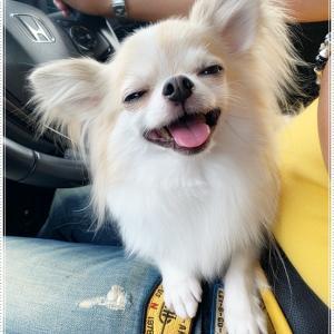 ファビの笑顔大好きっ(≧◇≦)