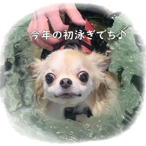 プール学習・・・ウィンクでアピール(^_-)-☆