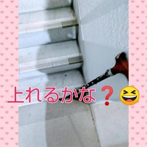 階段リハビリ!