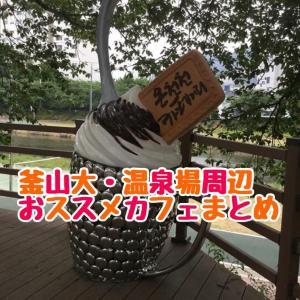 【釜山大周辺エリアカフェまとめ】釜山在住者がおススメカフェ!随時更新中