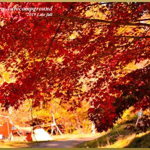 紅葉 温泉 そしてソロキャンプ・・・