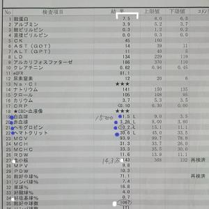 カラダノコト【40】入院55・56日目