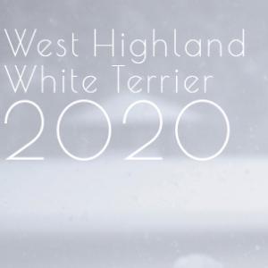 2020年版ウェスティ・カレンダー