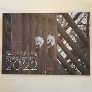 2022カレンダー刷り上がってきました!