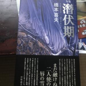 夢の力・喜夫第二句集『潜伏期』