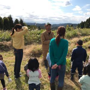 【イベント開催報告】自然栽培のさつまいも収穫体験&さつまいも料理を楽しむ会