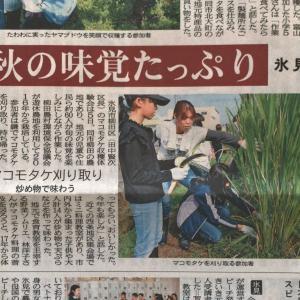 【新聞掲載】マコモタケイベントが掲載されました!