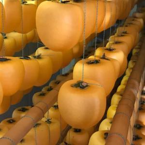 【イベント案内】富山干柿の美味しい謎を解きに行こう!