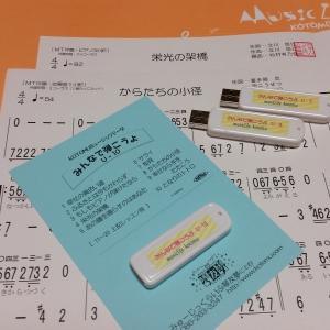 大正琴ピース Uシリーズ (^^♪