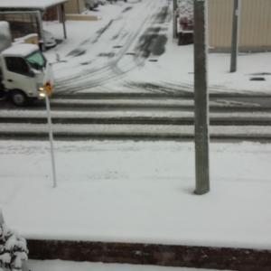 ワンズ地方。。雪です(-_-;)