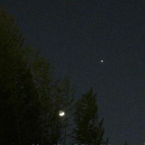月齢3.8のお月さんと金星
